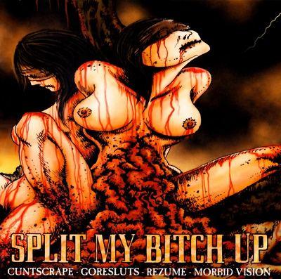 splitbitch.jpg